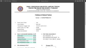 laporan psb online php 300x169 - Source code Aplikasi Penerimaan siswa baru Sistem OOP Php & MySQL