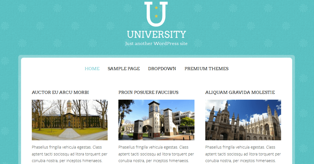 university - Download Gratis 10 Theme Wordpress Website Sekolah