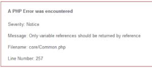 error core common php 300x134 - Cara Mengatasi Error core/common.php Pada Codeigniter